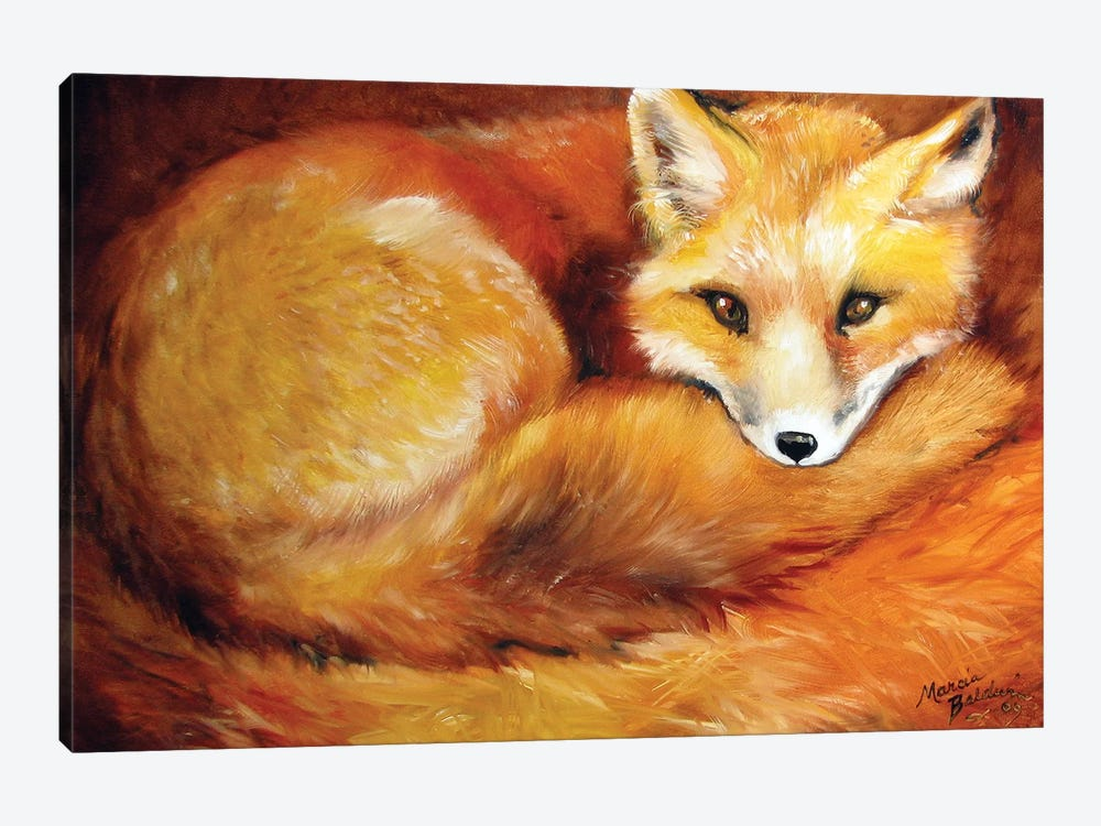 Red Fox Den by Marcia Baldwin 1-piece Canvas Print