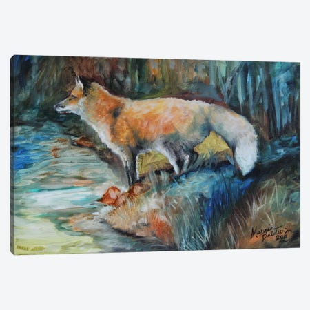 Red Fox II Canvas Print #BDN49} by Marcia Baldwin Canvas Wall Art