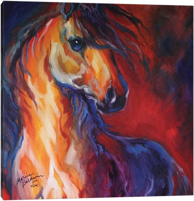 Stallion Red Dawn Canvas Art Print