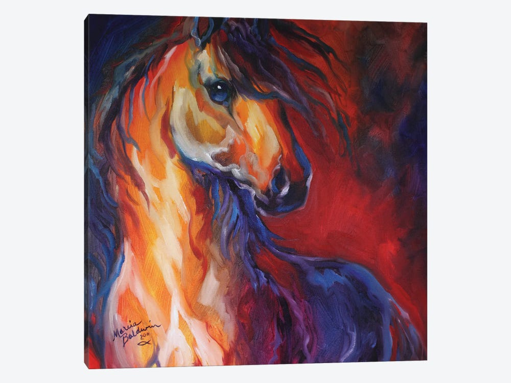 Stallion Red Dawn by Marcia Baldwin 1-piece Canvas Art Print