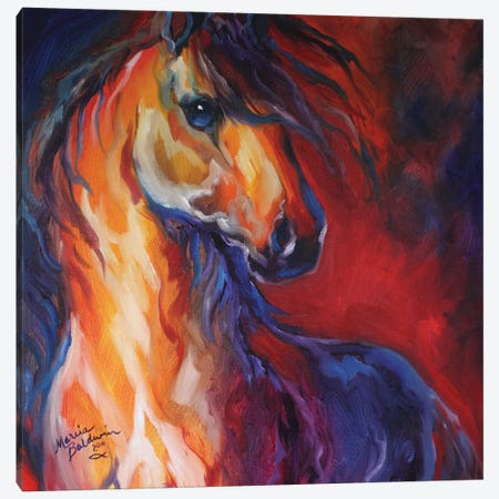 Stallion Red Dawn Canvas Print #BDN53} by Marcia Baldwin Canvas Print