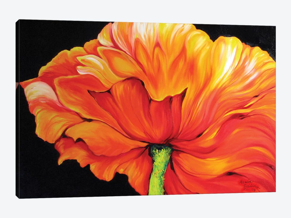 A Single Poppy 1-piece Canvas Print