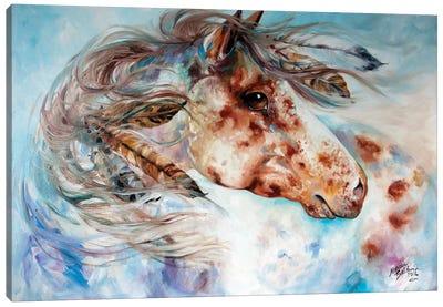 Thunder Appaloosa Indian War Horse Canvas Art Print