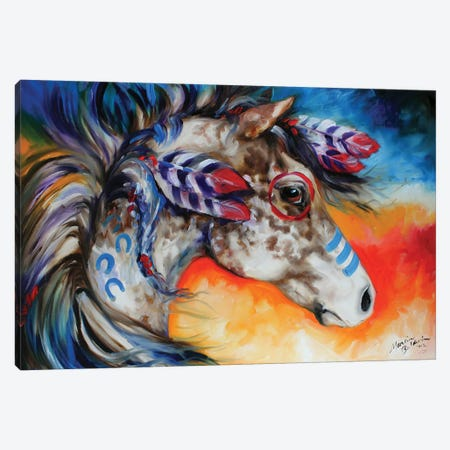 Appaloosa Indian War Horse Canvas Print #BDN7} by Marcia Baldwin Art Print