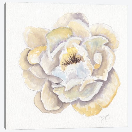 Backyard Peony II 3-Piece Canvas #BDY5} by Beverly Dyer Art Print