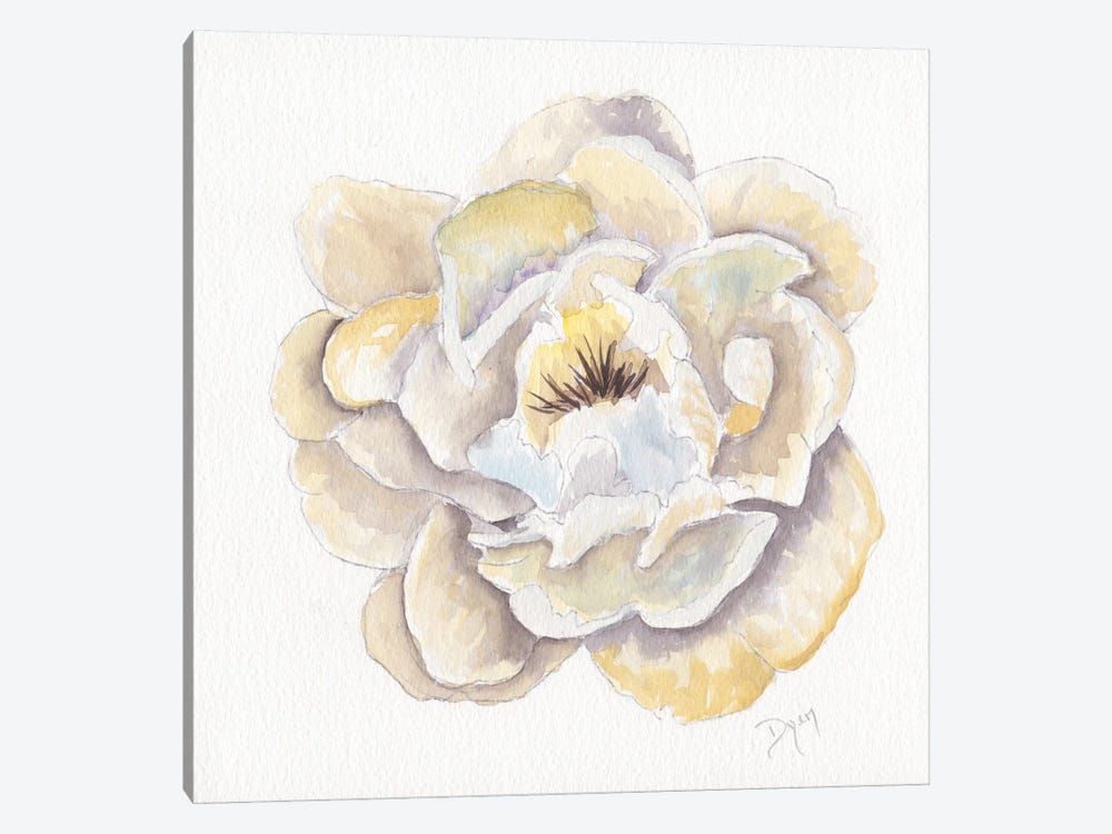 Backyard Peony II by Beverly Dyer 1-piece Canvas Artwork