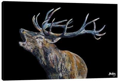 Fraser I Canvas Art Print