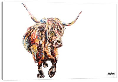 Fraser's Coo Canvas Art Print