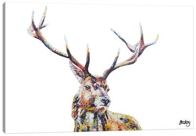Hamish Canvas Art Print