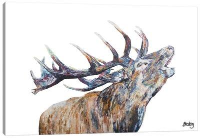 Murdo Canvas Art Print