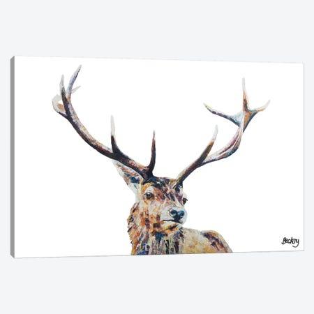 Nigel Canvas Print #BEC31} by Becksy Canvas Print