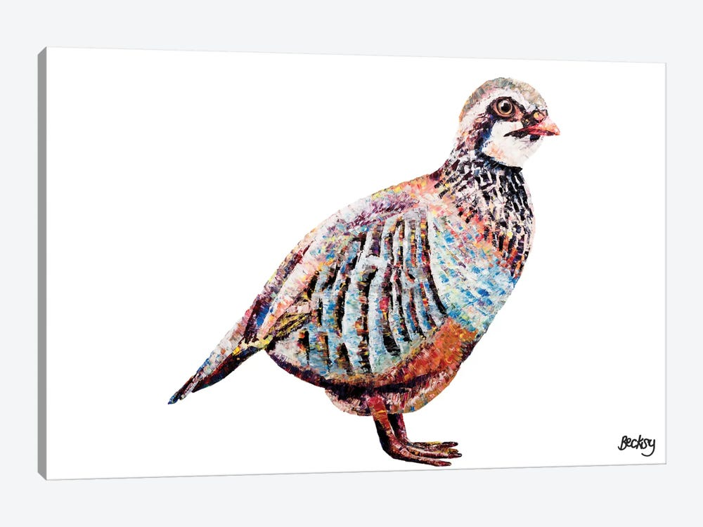 Partridge by Becksy 1-piece Canvas Art