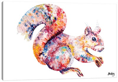 Red Squirell Canvas Art Print