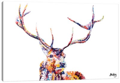 Red Stag Canvas Print #BEC37