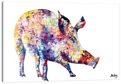 Wild Boar Canvas Art Print