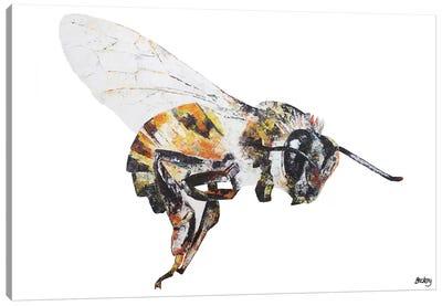 Bee Canvas Print #BEC44