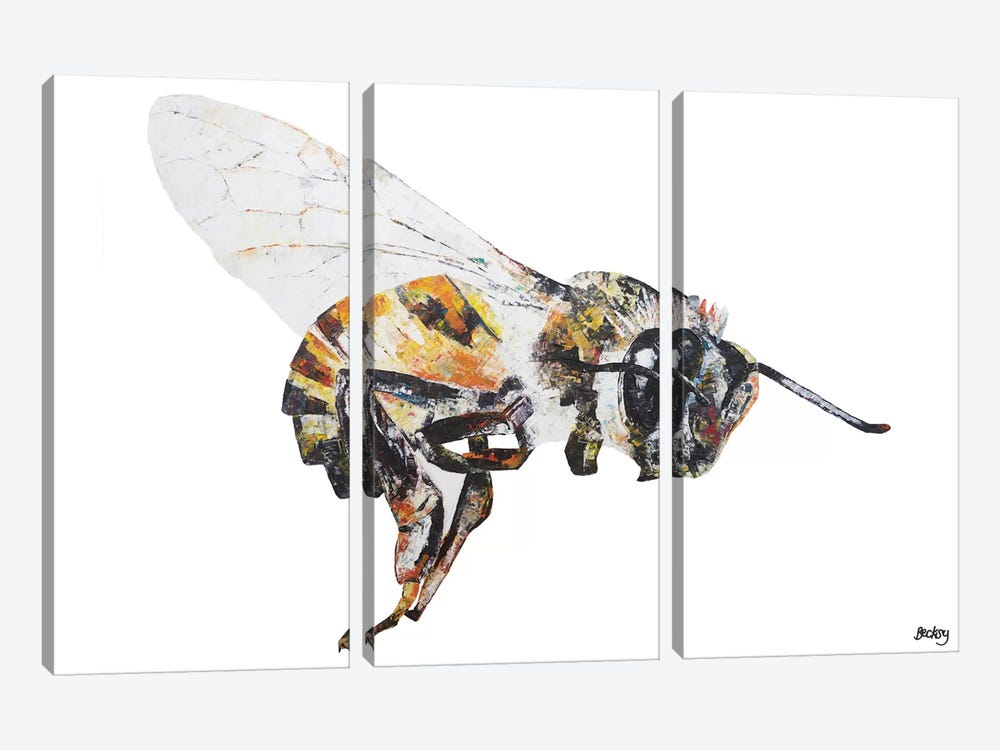 Bee by Becksy 3-piece Canvas Art