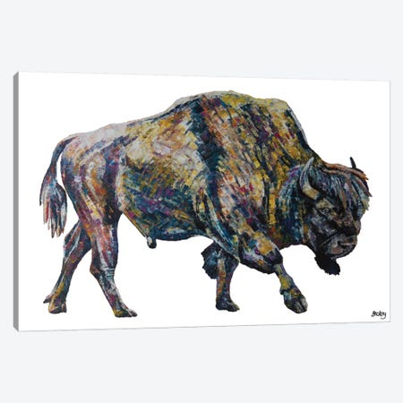 Buffalo Canvas Print #BEC46} by Becksy Canvas Art Print
