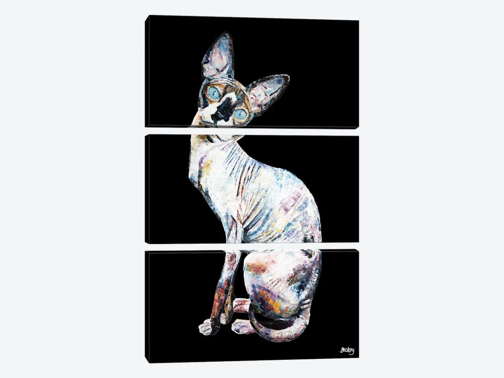 Larry, Black Background by Becksy 3-piece Canvas Art Print