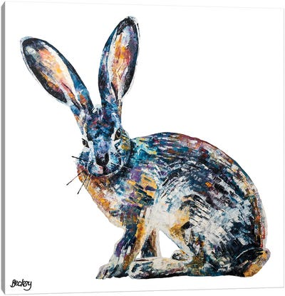 Jack Rabbit Canvas Art Print