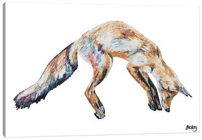 Mr Aikwood Canvas Art Print