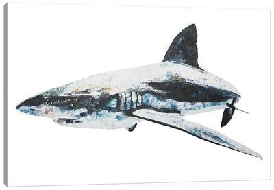 Bruce Canvas Art Print