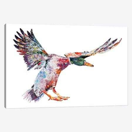 Daividh Canvas Print #BEC75} by Becksy Canvas Wall Art