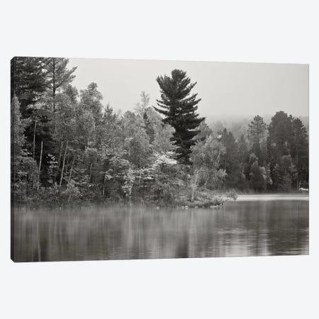 Little Island, Fortune Lake, Bewabic State Park, Iron County, Upper Peninsula, Michigan, USA Canvas Print #BED3} by Petr Bednarik Art Print
