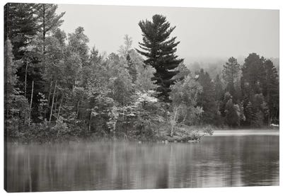 Little Island, Fortune Lake, Bewabic State Park, Iron County, Upper Peninsula, Michigan, USA Canvas Art Print