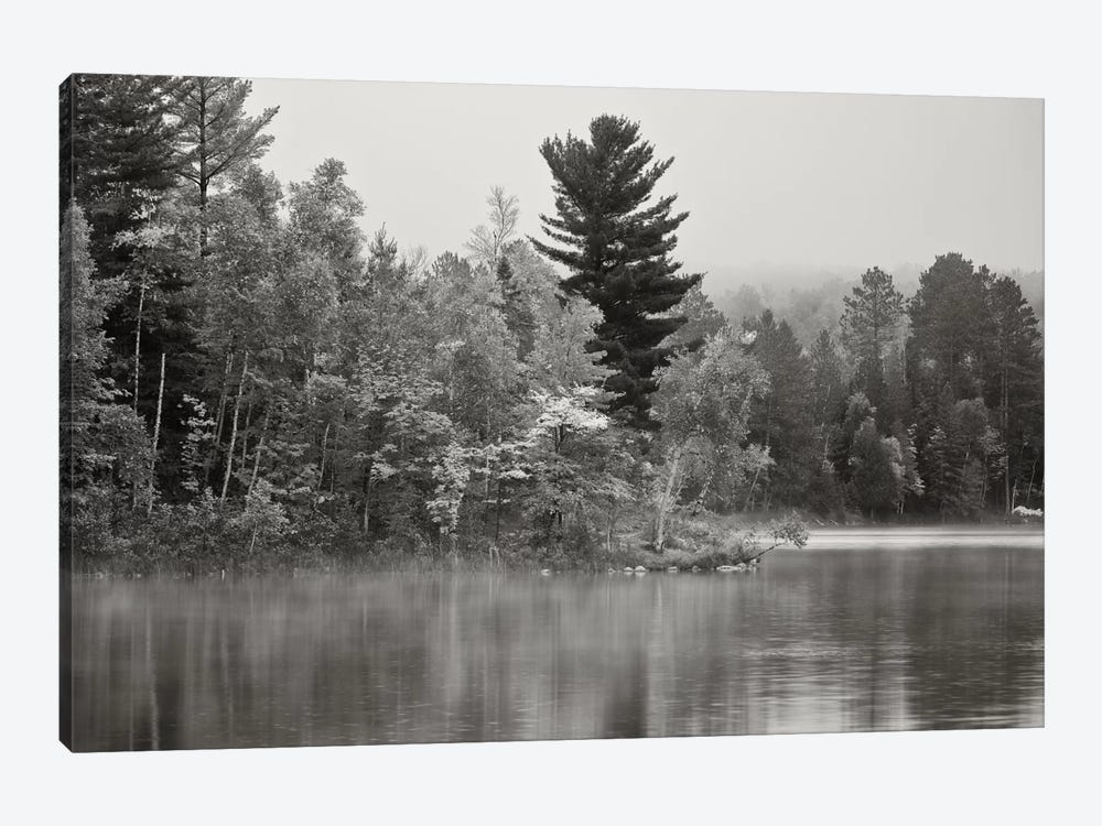 Little Island, Fortune Lake, Bewabic State Park, Iron County, Upper Peninsula, Michigan, USA by Petr Bednarik 1-piece Canvas Artwork
