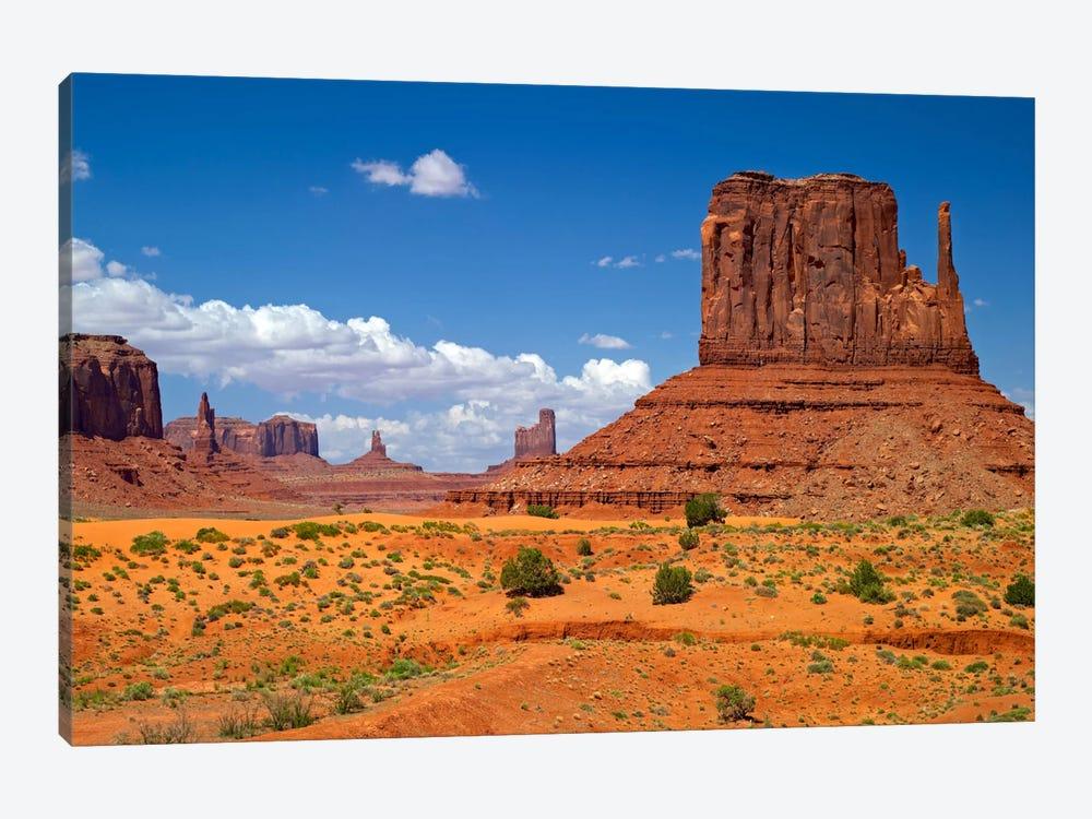 West Mitten Butte, Monument Valley, Navajo Nation, Arizona, USA by Petr Bednarik 1-piece Canvas Artwork