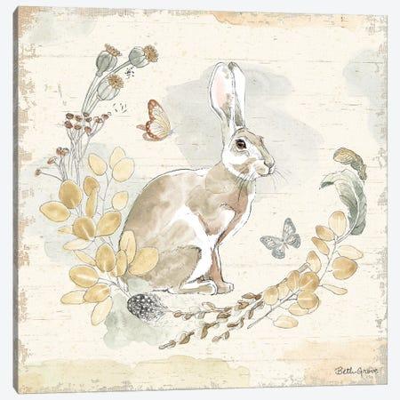 Woodland Wreath X Canvas Print #BEG13} by Beth Grove Art Print