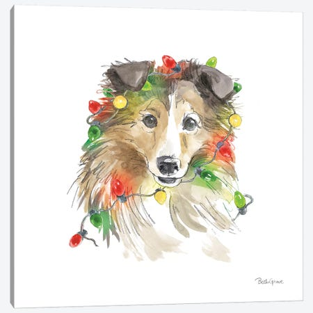 Holiday Paws IX on White Canvas Print #BEG140} by Beth Grove Canvas Artwork
