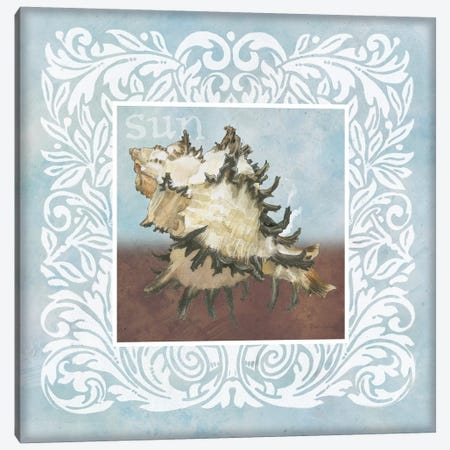 Sandy Shells Blue Spikey Canvas Print #BEG148} by Beth Grove Canvas Art