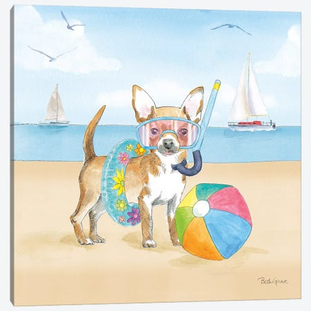 Summer Paws II No Words Canvas Print #BEG149} by Beth Grove Canvas Artwork
