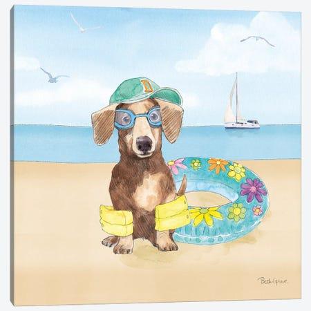 Summer Paws III No Words Canvas Print #BEG150} by Beth Grove Canvas Art Print