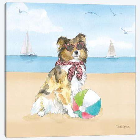 Summer Paws V No Words Canvas Print #BEG152} by Beth Grove Art Print