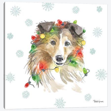 Holiday Paws IX Canvas Print #BEG24} by Beth Grove Canvas Art Print