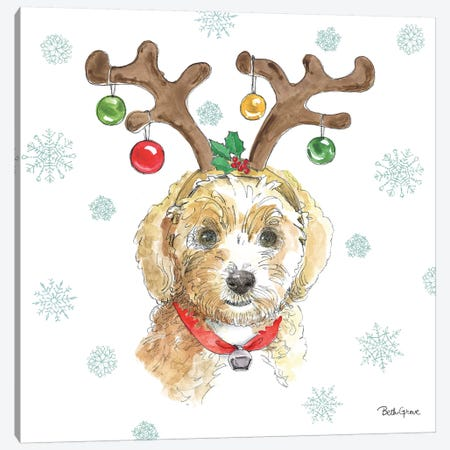 Holiday Paws VI Canvas Print #BEG26} by Beth Grove Art Print