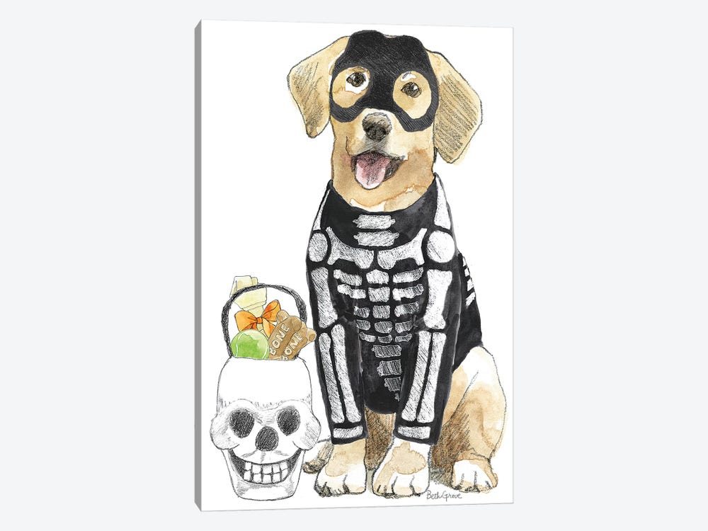 Halloween Pets VII by Beth Grove 1-piece Canvas Artwork