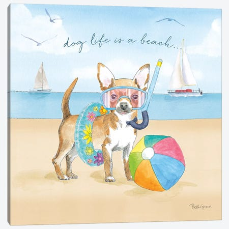 Summer Paws II Canvas Print #BEG38} by Beth Grove Canvas Art Print
