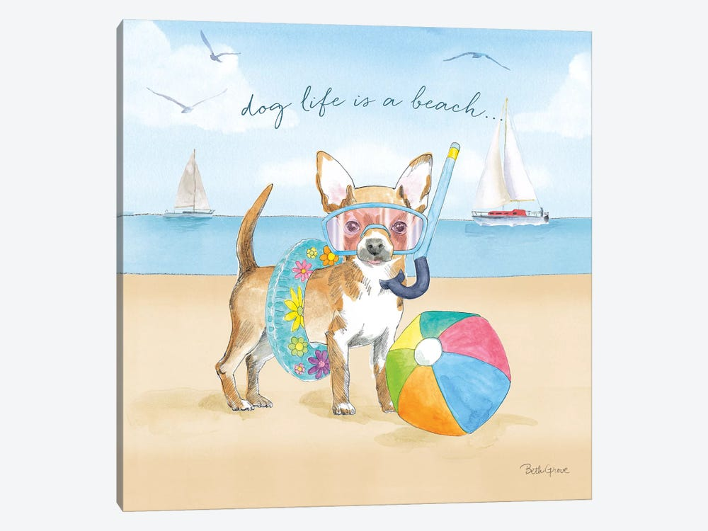 Summer Paws II by Beth Grove 1-piece Canvas Art