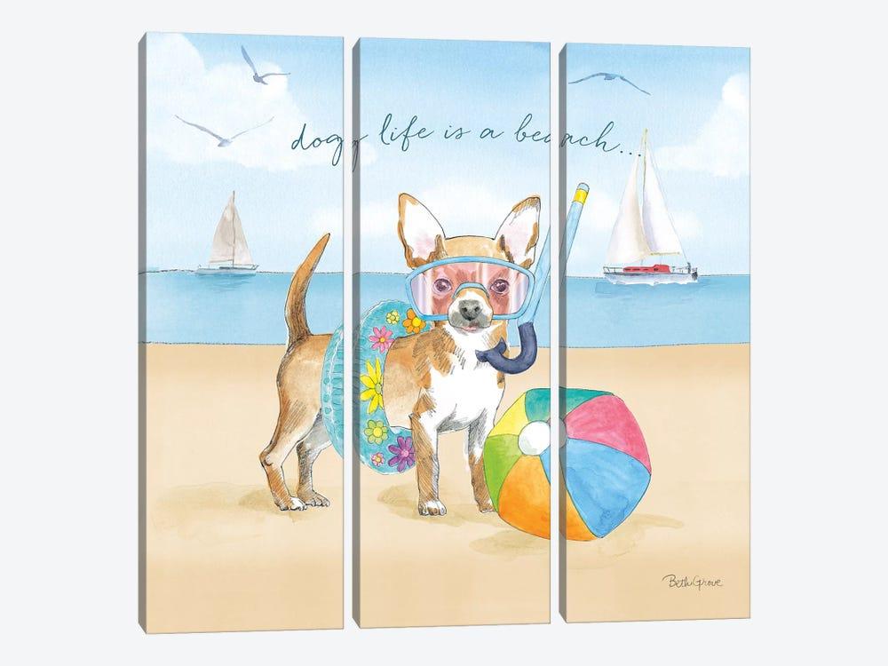 Summer Paws II by Beth Grove 3-piece Canvas Art