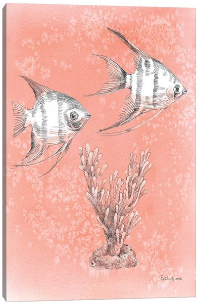 Coastal Sea Life III Canvas Art Print