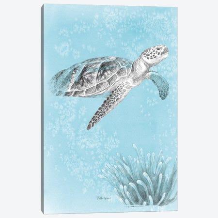 Coastal Sea Life I v2 Canvas Print #BEG51} by Beth Grove Canvas Art Print