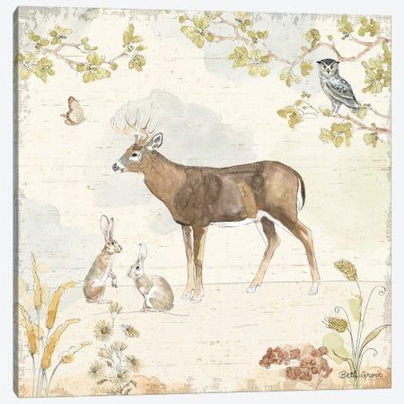 Woodland Wreath III Canvas Print #BEG6} by Beth Grove Art Print