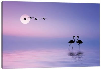 Flying Flamingo Canvas Art Print