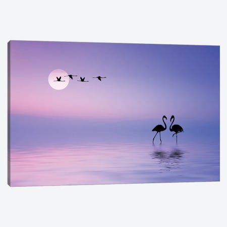 Flying Flamingo Canvas Print #BEH1} by Bess Hamiti Canvas Art Print