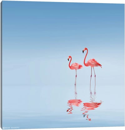 Flamingo Canvas Art Print