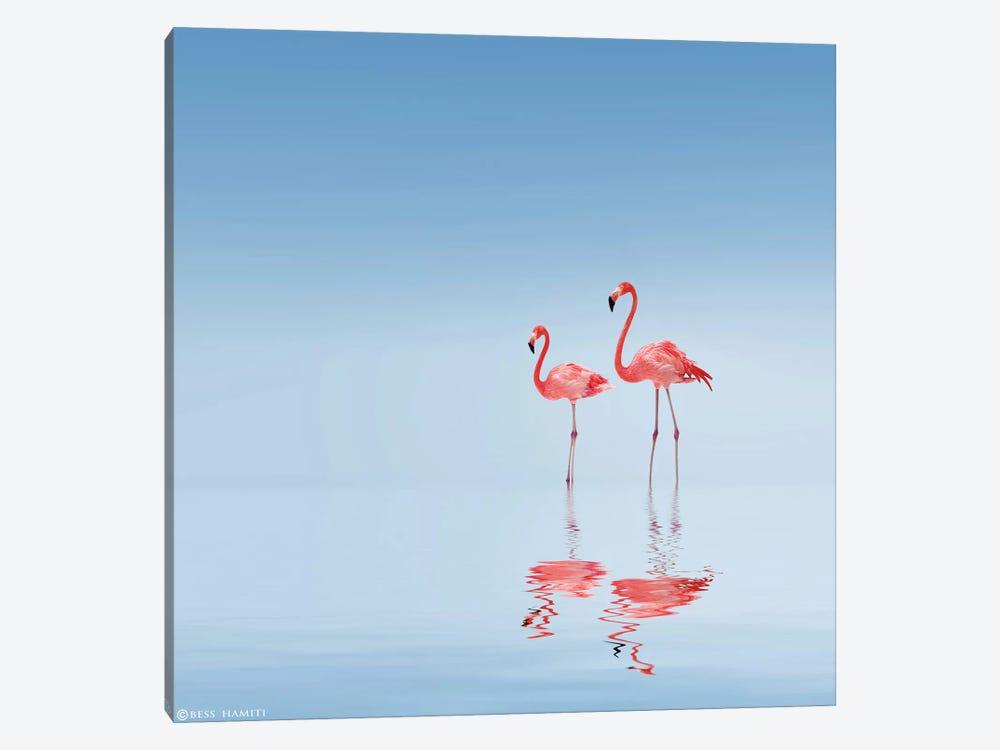 Flamingo by Bess Hamiti 1-piece Canvas Print